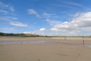 Gallery image - Special Outing to Brighouse Bay.